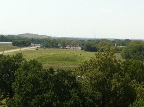 Cahokia view